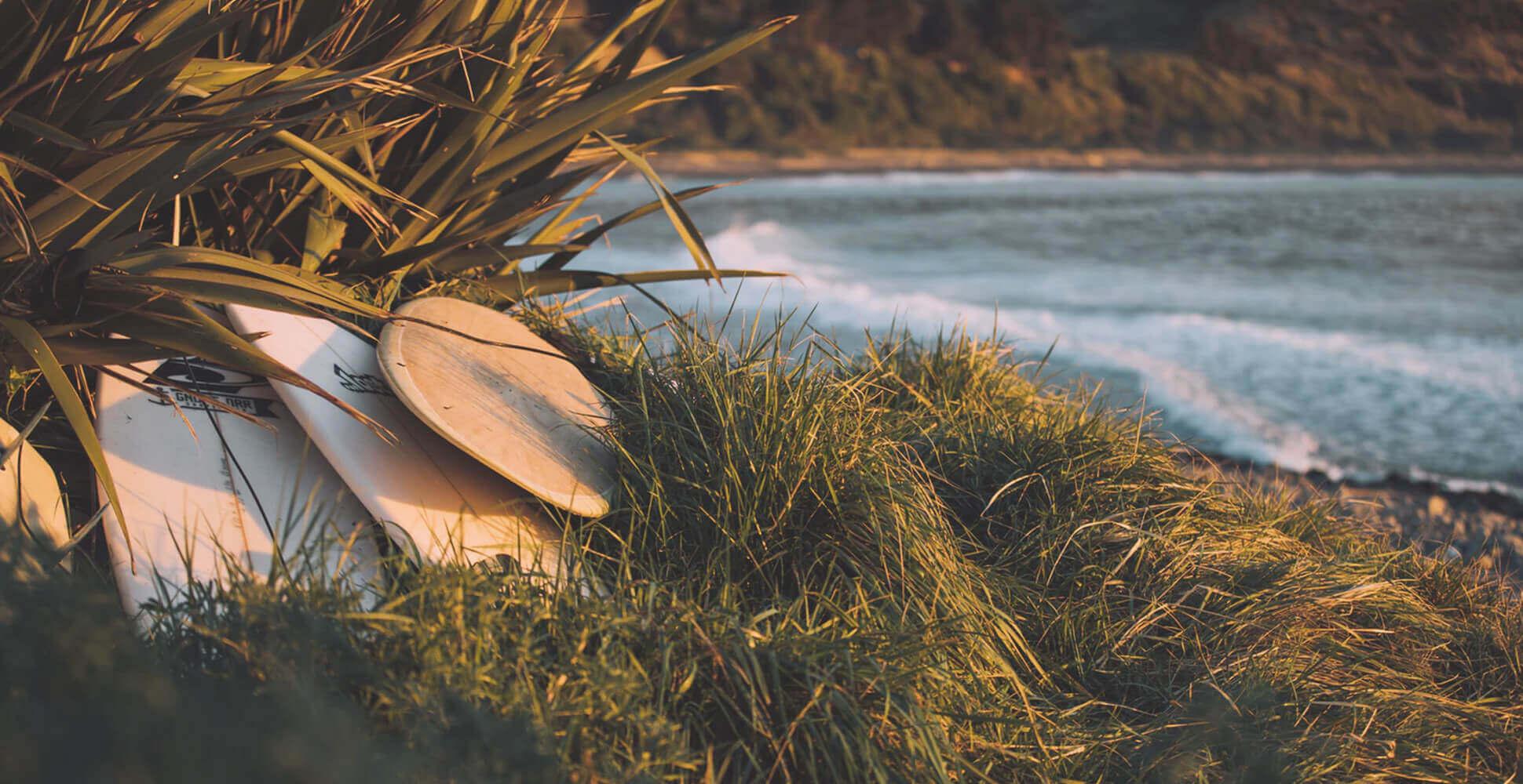 Foto de tablas de surf apoyadas en una palmera en la playa