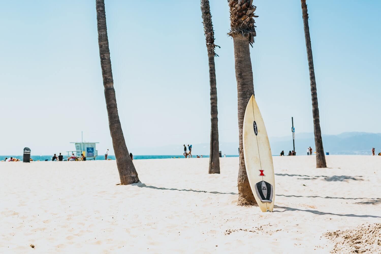 Tabla de surf apoyada en una palmera en la playa