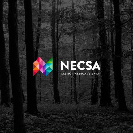Logotipo de Necsa