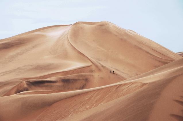 imagen desierto