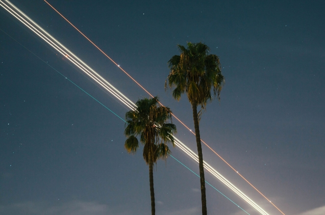 Palms splattered sky with lasers ray in the background